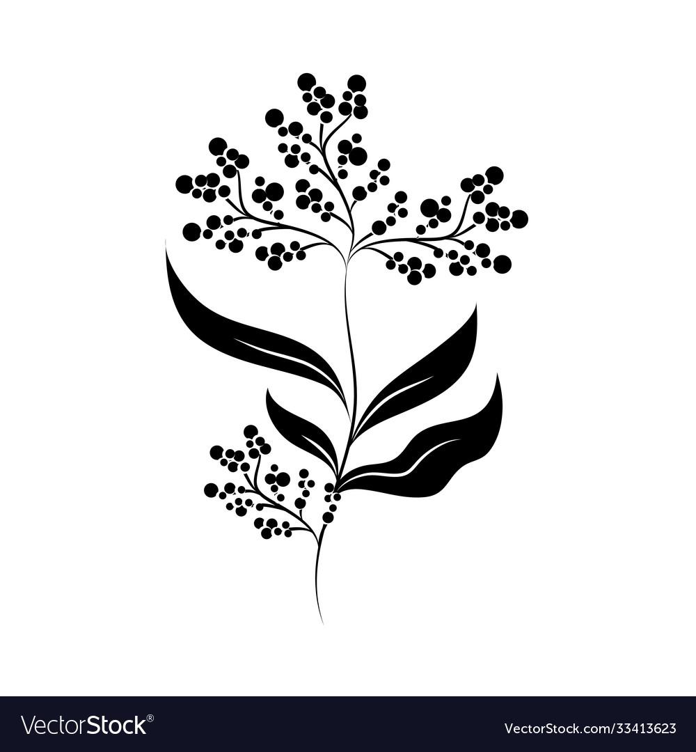 Minimalist tattoo flower berries branch silhouette