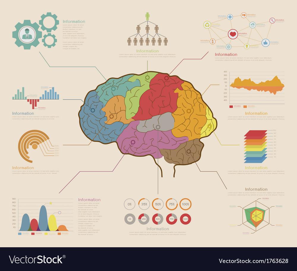 Infographic elements brain concept