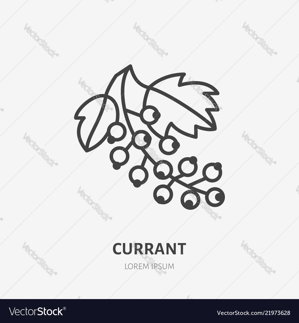 Red currant flat line icon forest berry sign