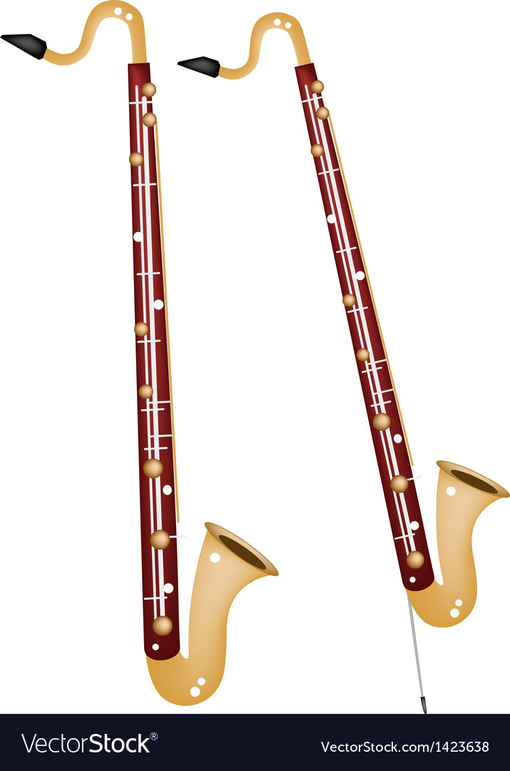 A Musical Bass Clarinet vector image