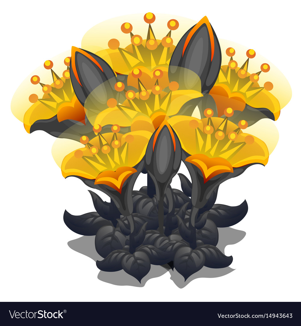 Bouquet Of Black And Yellow Flowers Royalty Free Vector