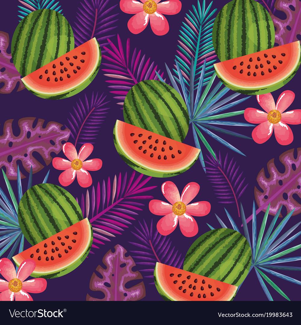 Tropical garden with watermelon