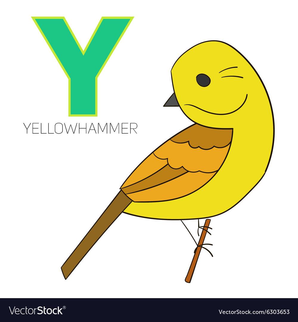 alphabet letter y yellowhammer bird royalty free vector