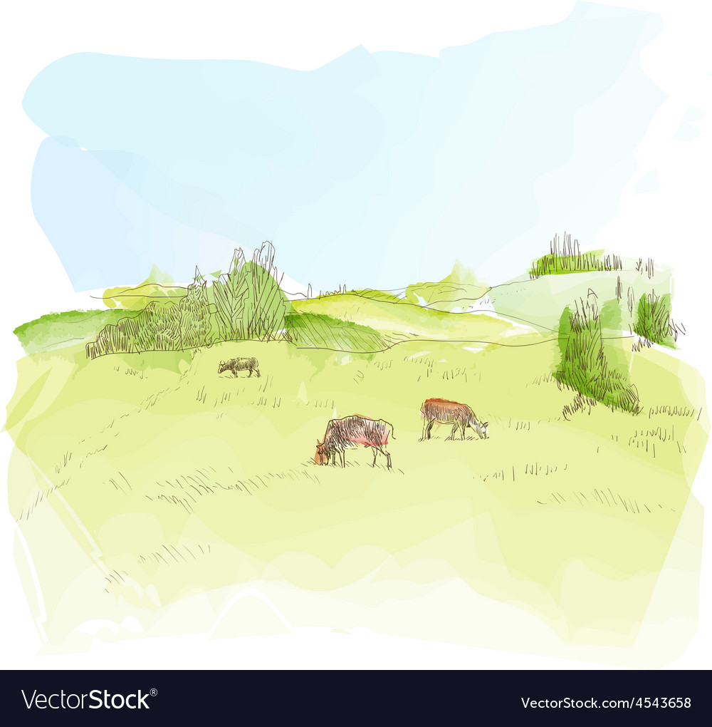 Watercolor landscape with cows vector image