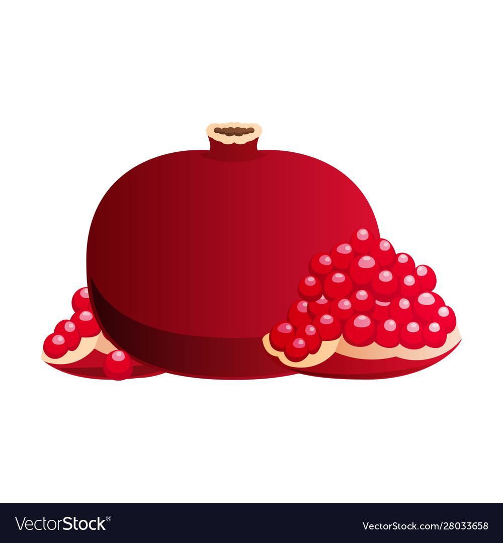 Whole and cut pomegranate icon set flat cartoon