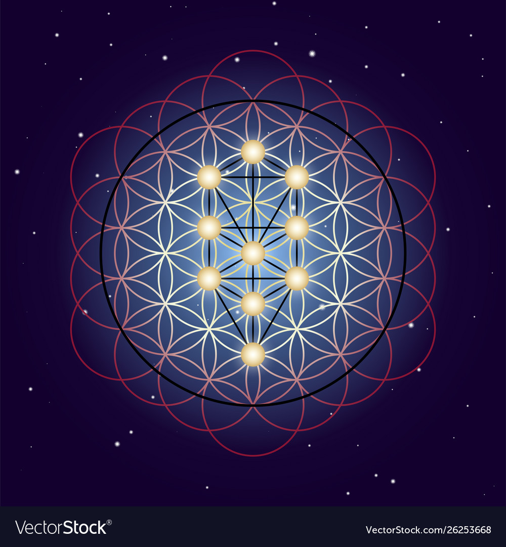 Flower and tree life sacred geometry on starry