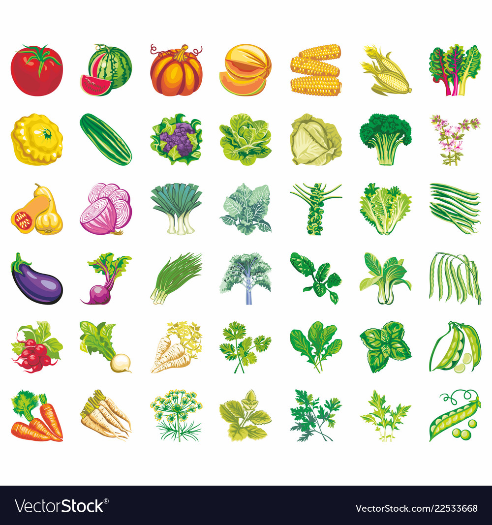 Vegetables icons flat set with radish pumpkin