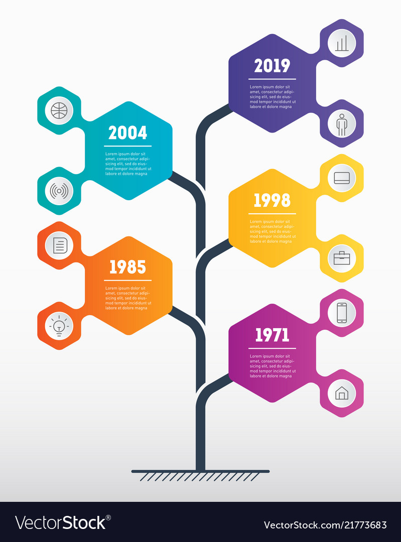 Vertical timeline infographics the development