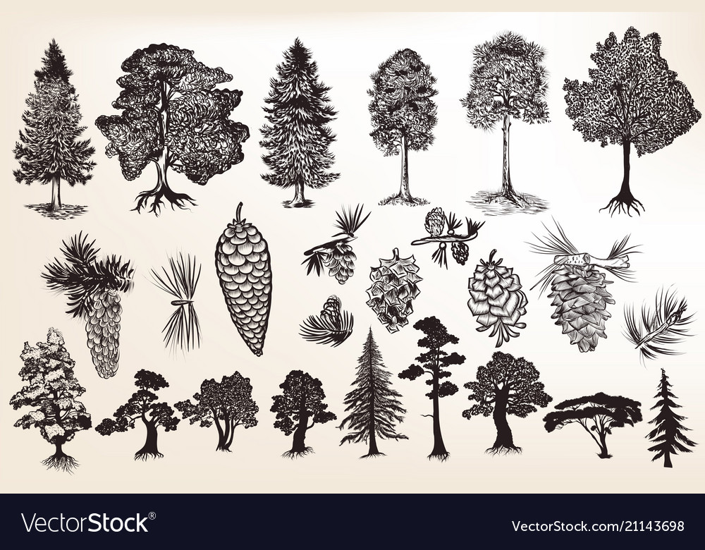Collection or set of hand drawn trees reto style