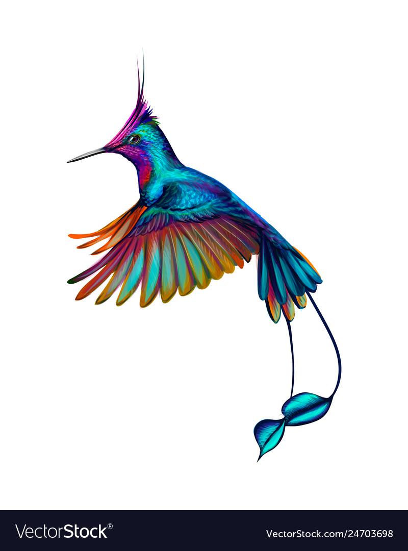 Hummingbird from a splash watercolor hand