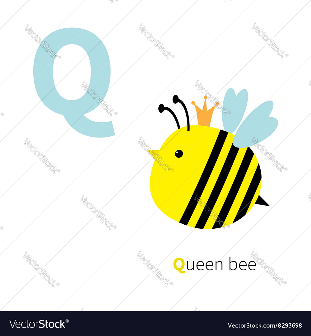 Letter Q Queen bee Zoo alphabet English abc with