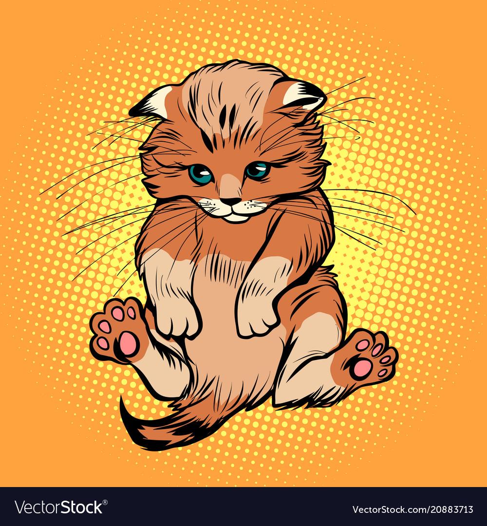 Cute kitten pet cat vector image