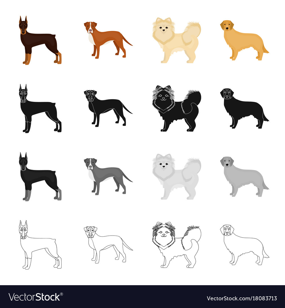 Doberman beagle pomeranian and other web icon