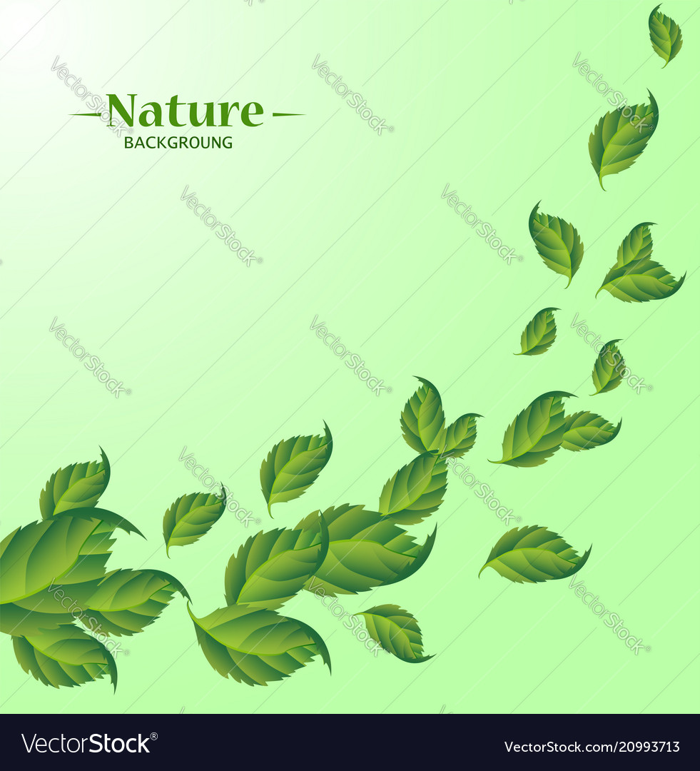 Realistic fly green leaves pattern background vector image
