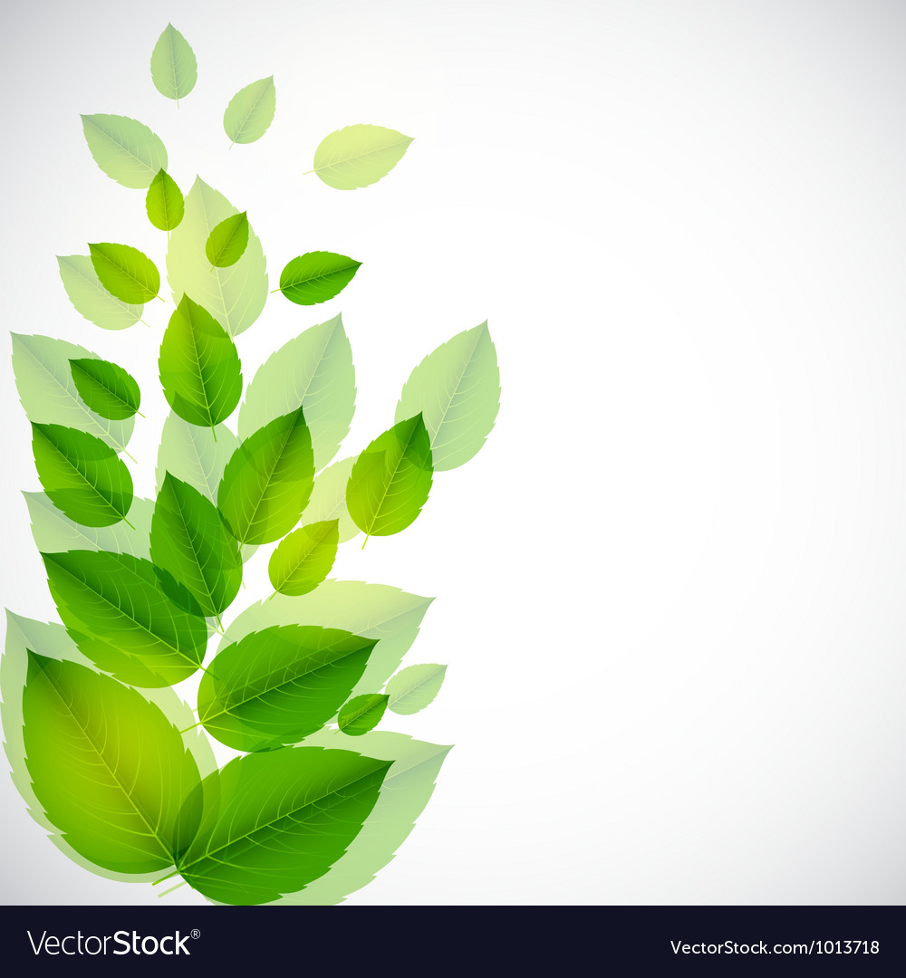 abstract nature background with leaves royalty free vector
