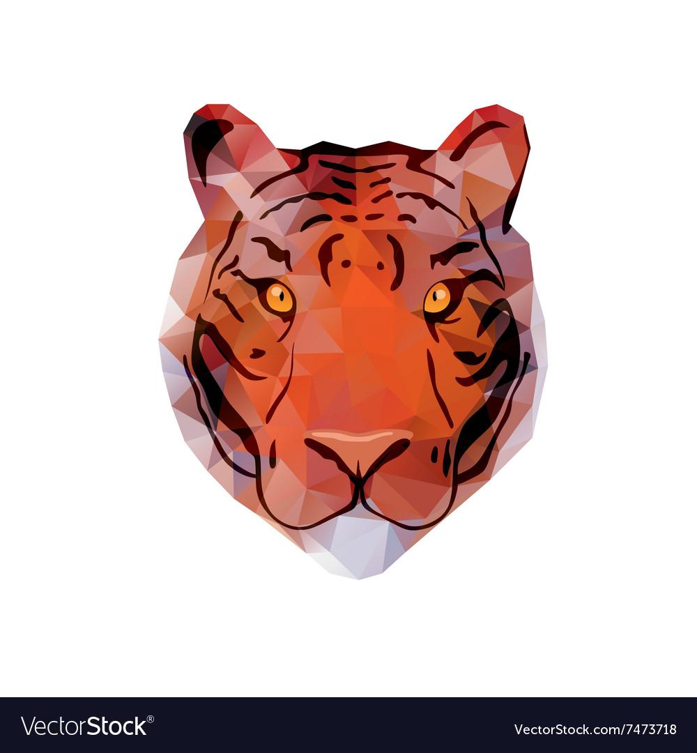 Abstract Tiger Head
