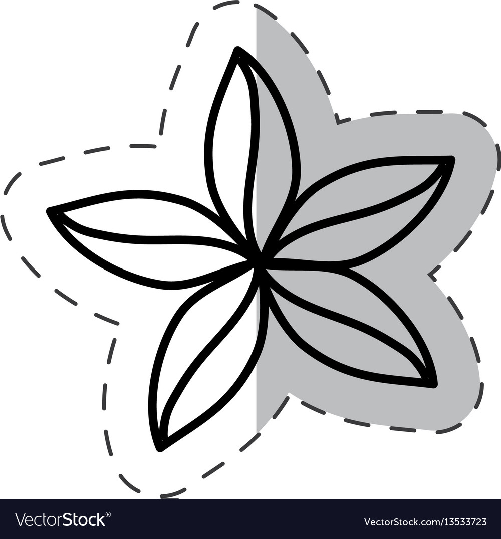 Flower natural ornate cut line