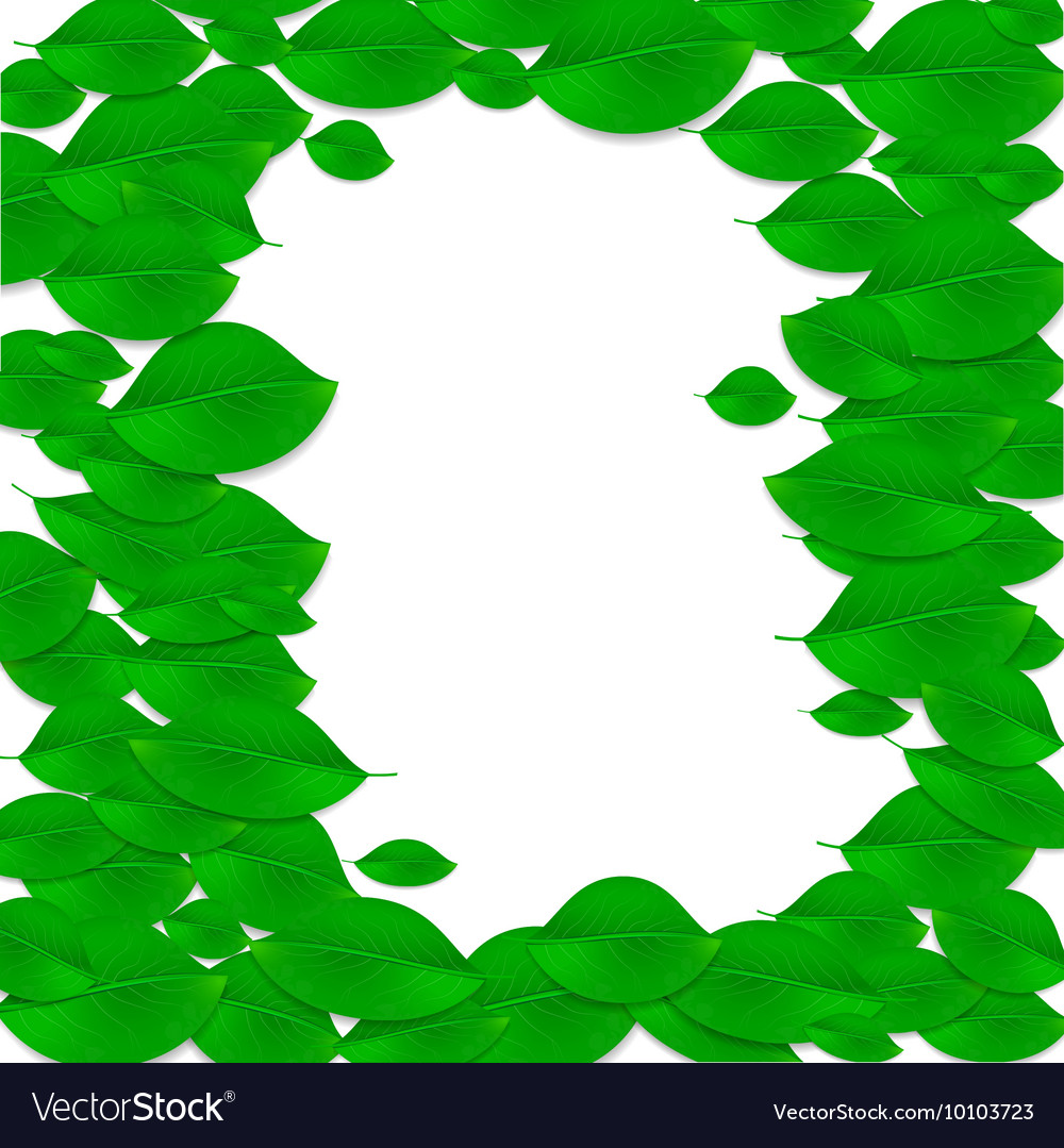 Realistic green leaves frame Ecology concept