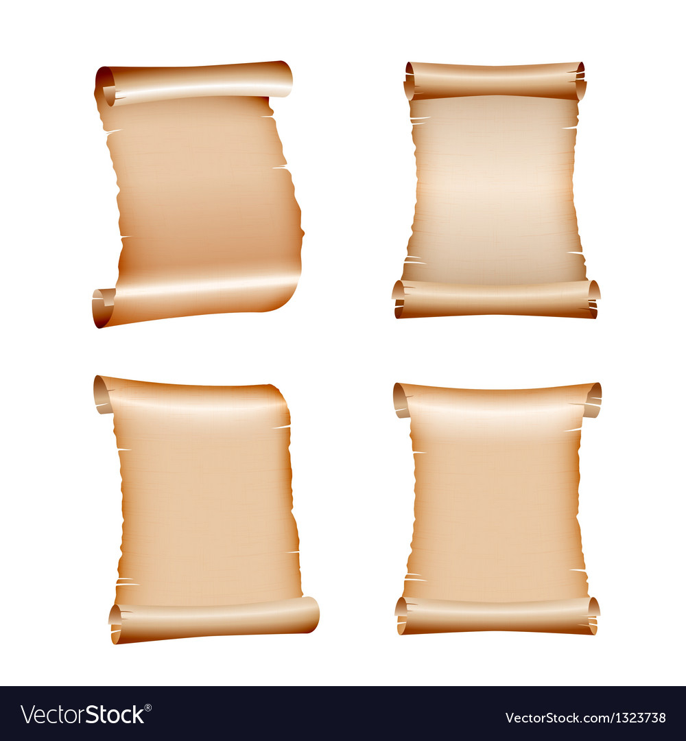 Set of old blank scrolls paper vector image