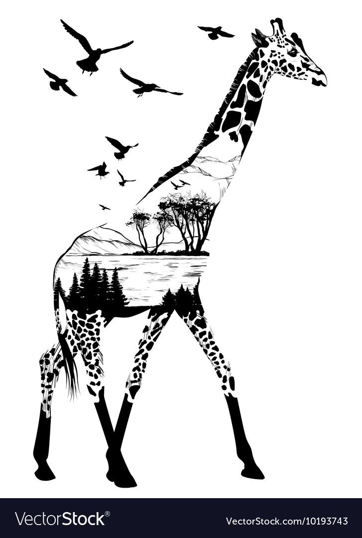 Giraffe for your design wildlife concept vector image