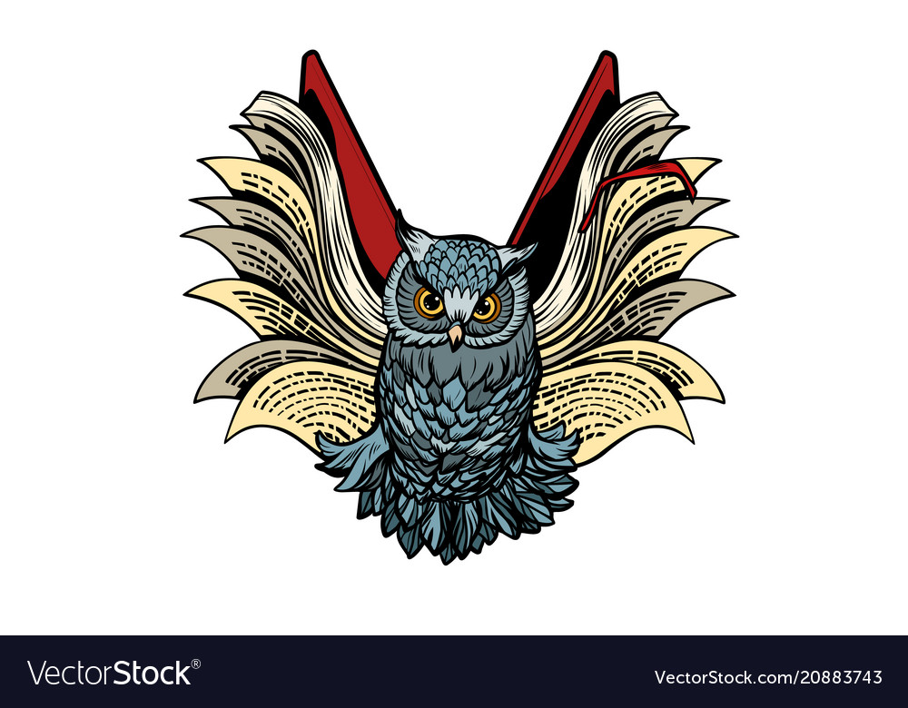 Owl book flies isolate on white background
