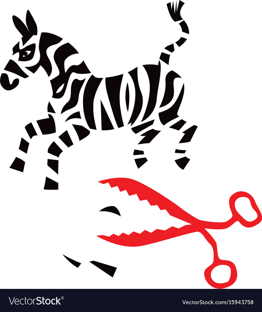 Zebra cut with red scissors vector image