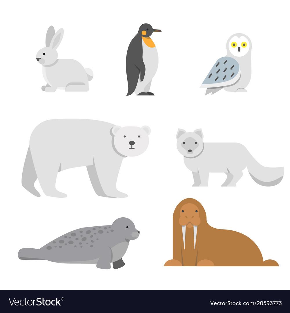 Arctic snow animals