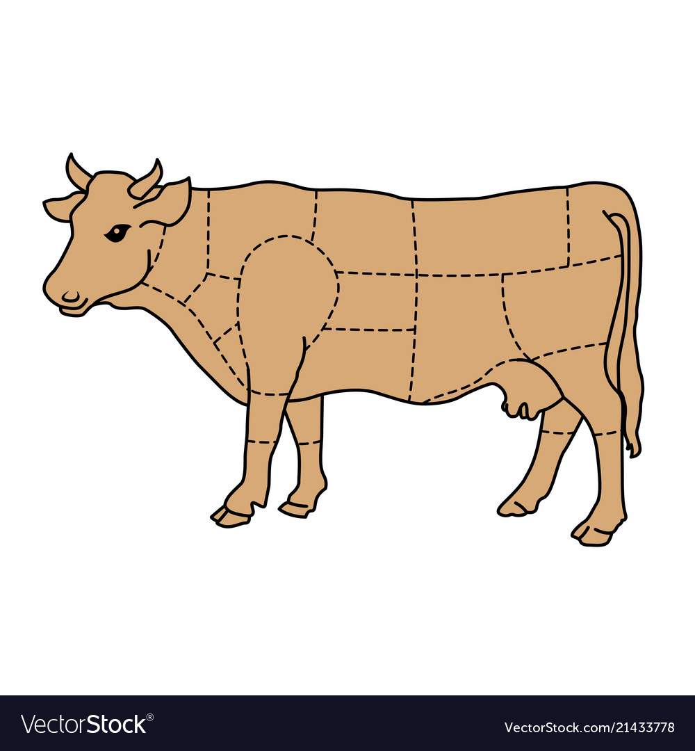 cartoon cow cattle meat diagram vector 21433778 cartoon cow cattle meat diagram royalty free vector image