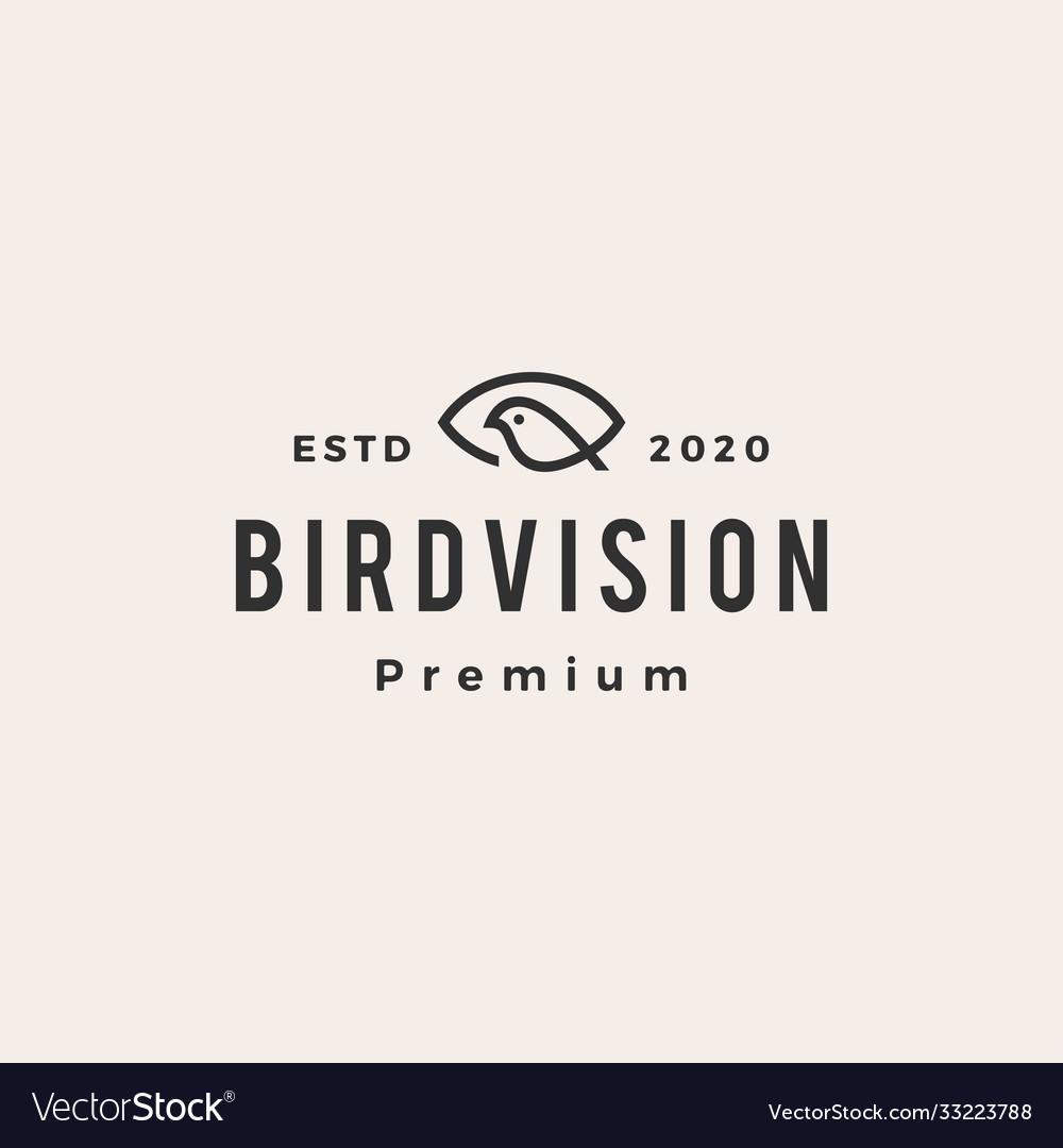 Eye bird vision hipster vintage logo icon