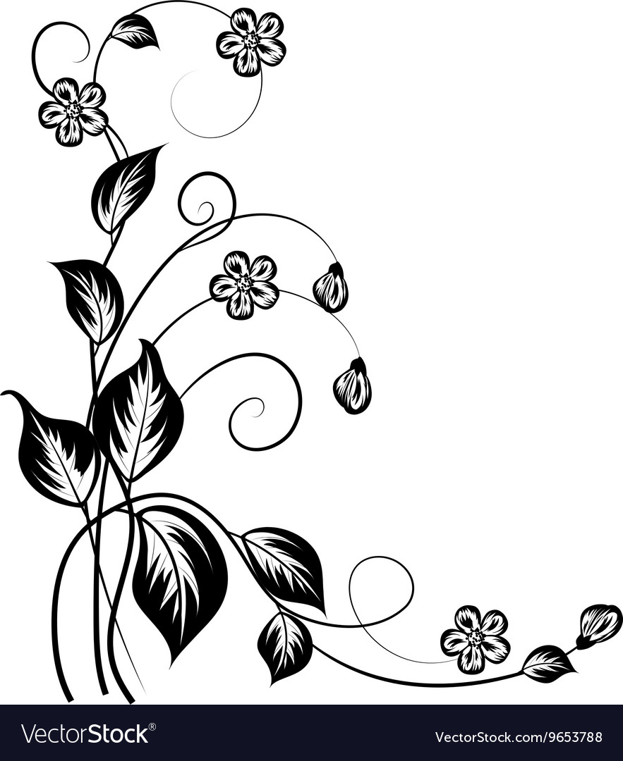 Simple floral background in black and white vector image