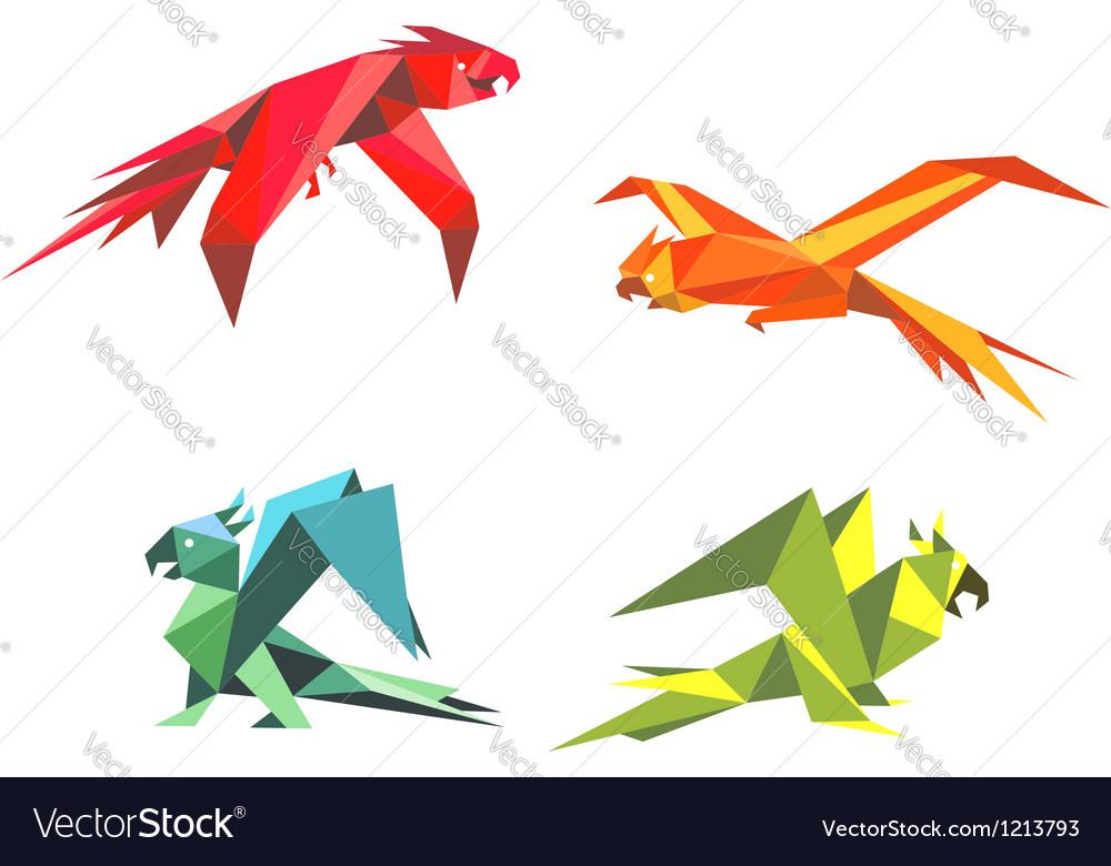Colorful parrot birds