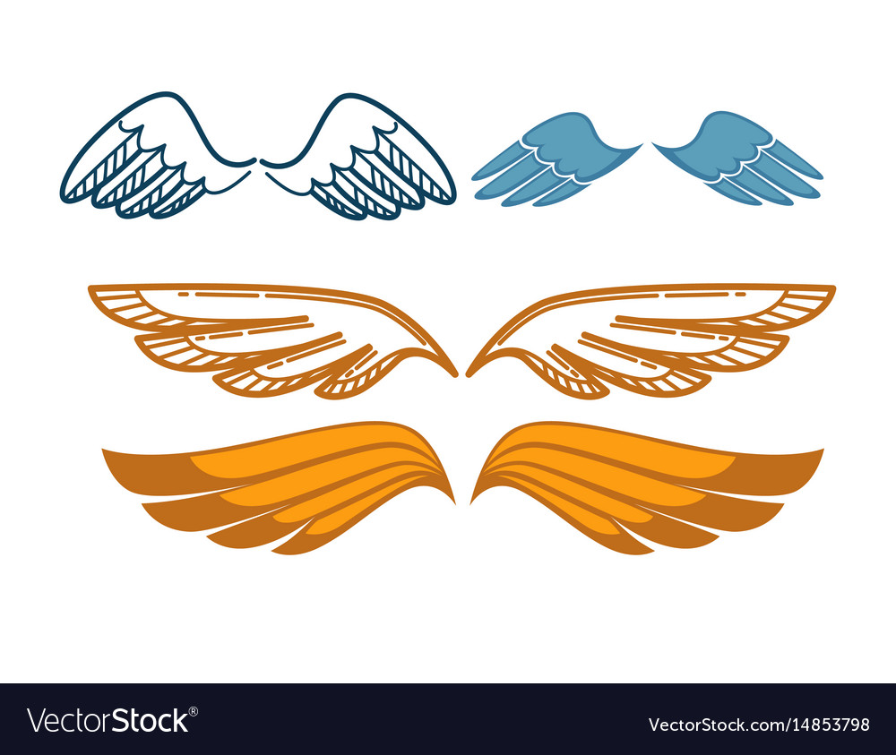 Gorgeous wings set isolated on white angel gold vector image