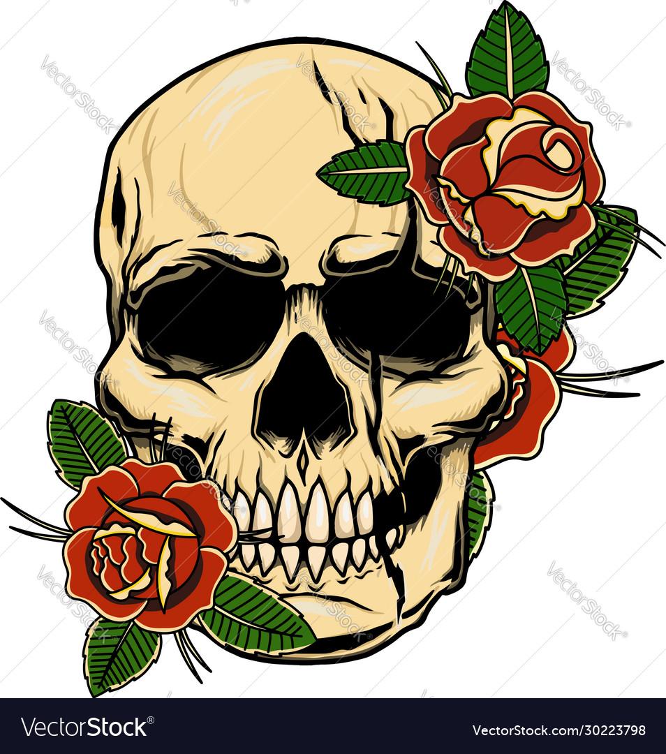 Vintage human skull with roses design element