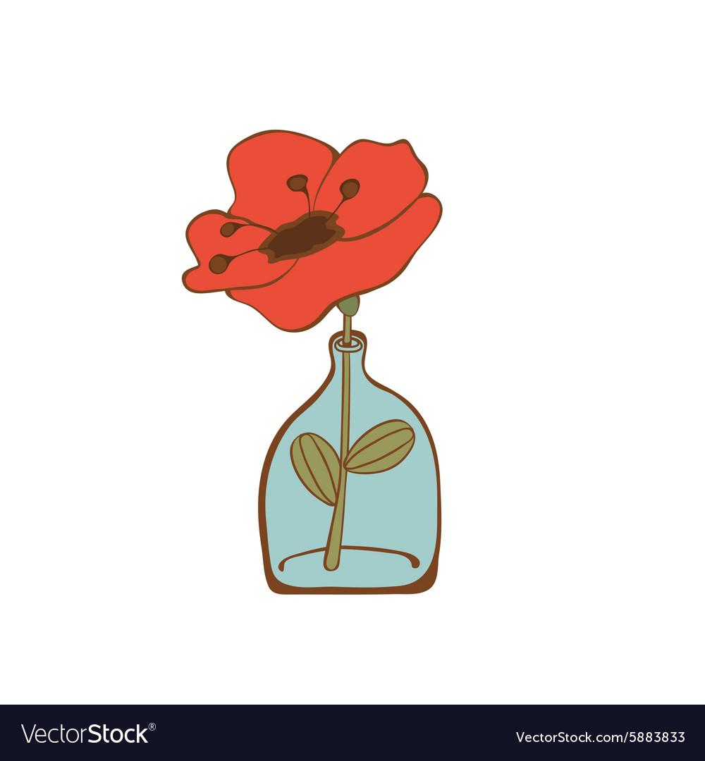Beautiful Poppy Flower In Glass Bottle Royalty Free Vector