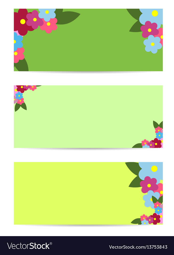 Three posters with colorful flowers and green leaf vector image