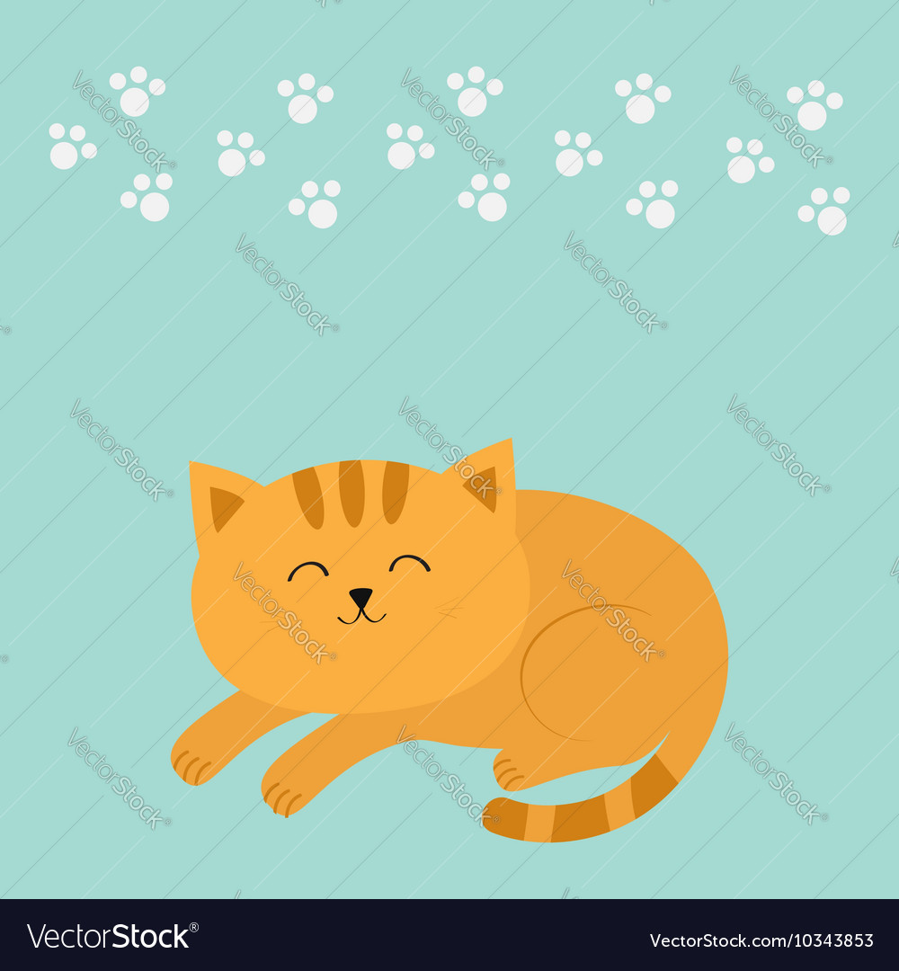 Cute lying sleeping orange cat with moustache vector image