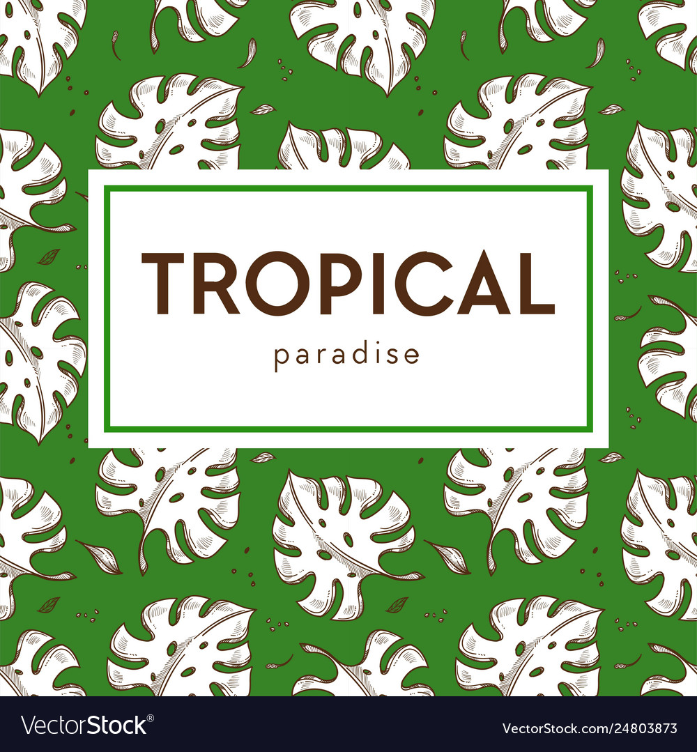 Tropical paradise banner monstera leaves seamless