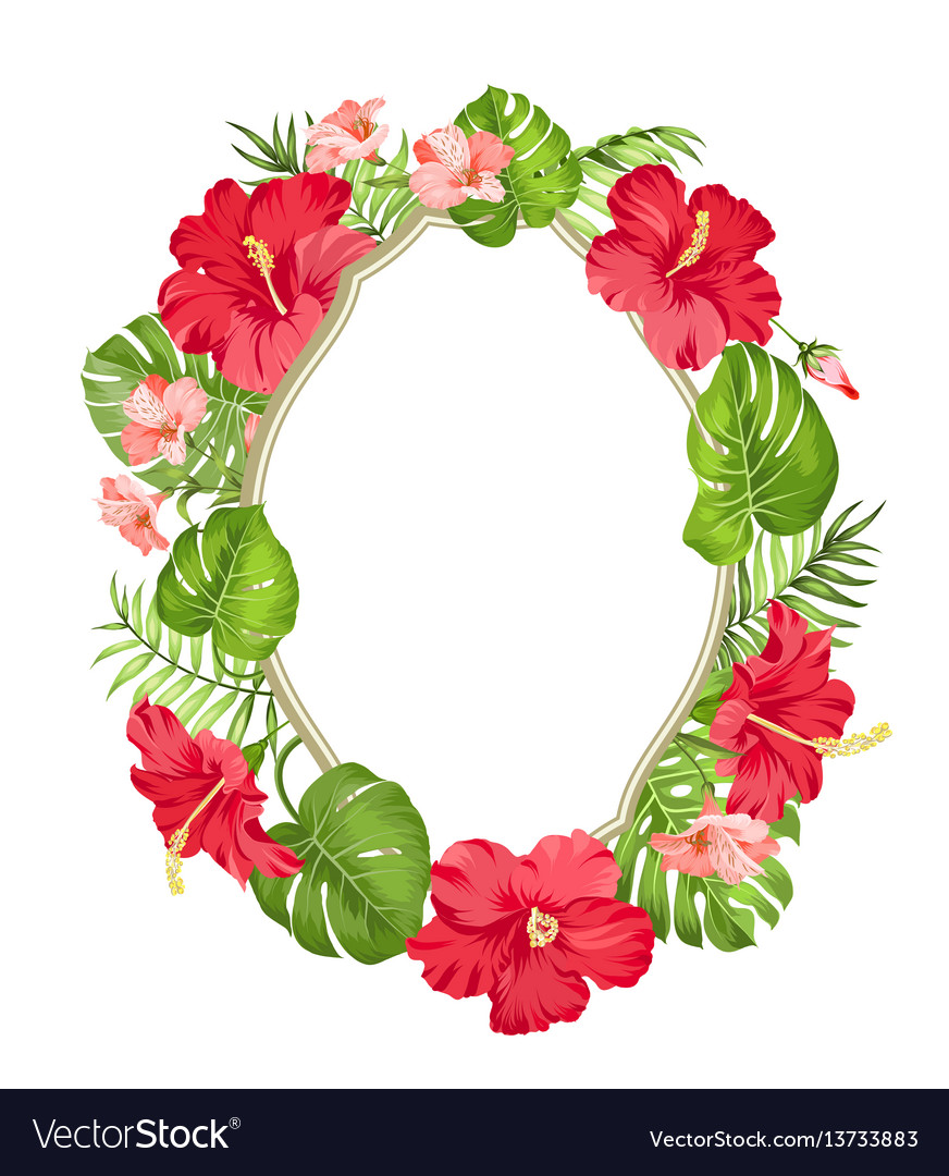 Tropical flower wreath vector image