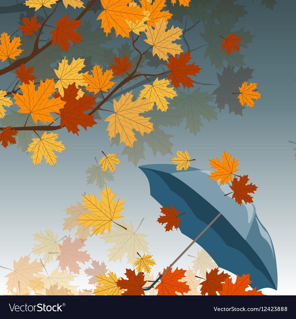 Autumn leaves and umbrella