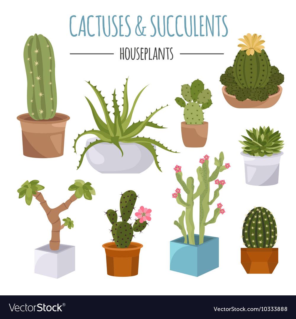 Icon Set Houseplants Vector Image