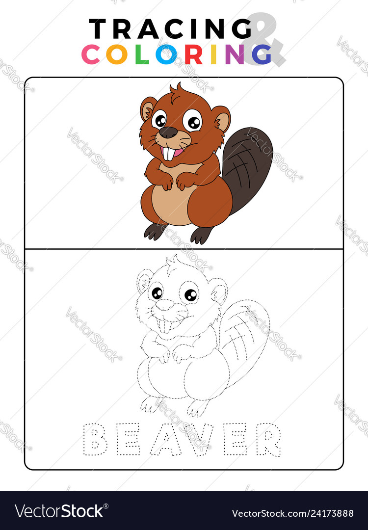 - Funny Beaver Tracing And Coloring Book With Vector Image