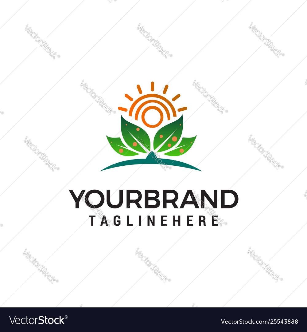 Sun and leaf logo design concept template