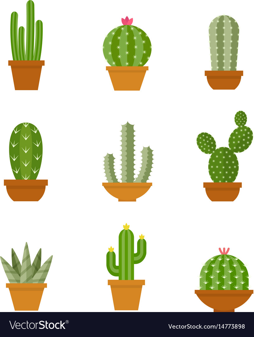 Cactus icons in a flat style on a white background