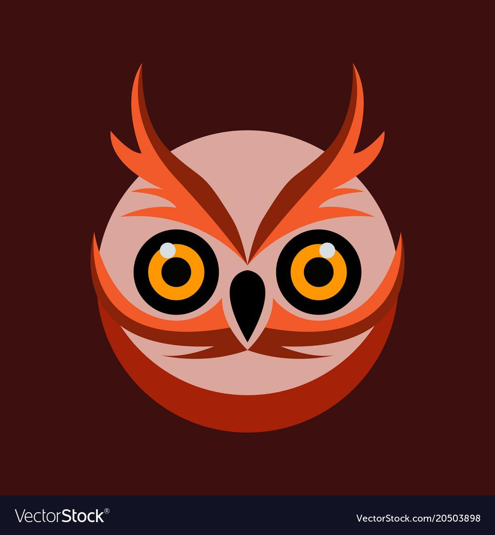 Owl bird logo template vector image