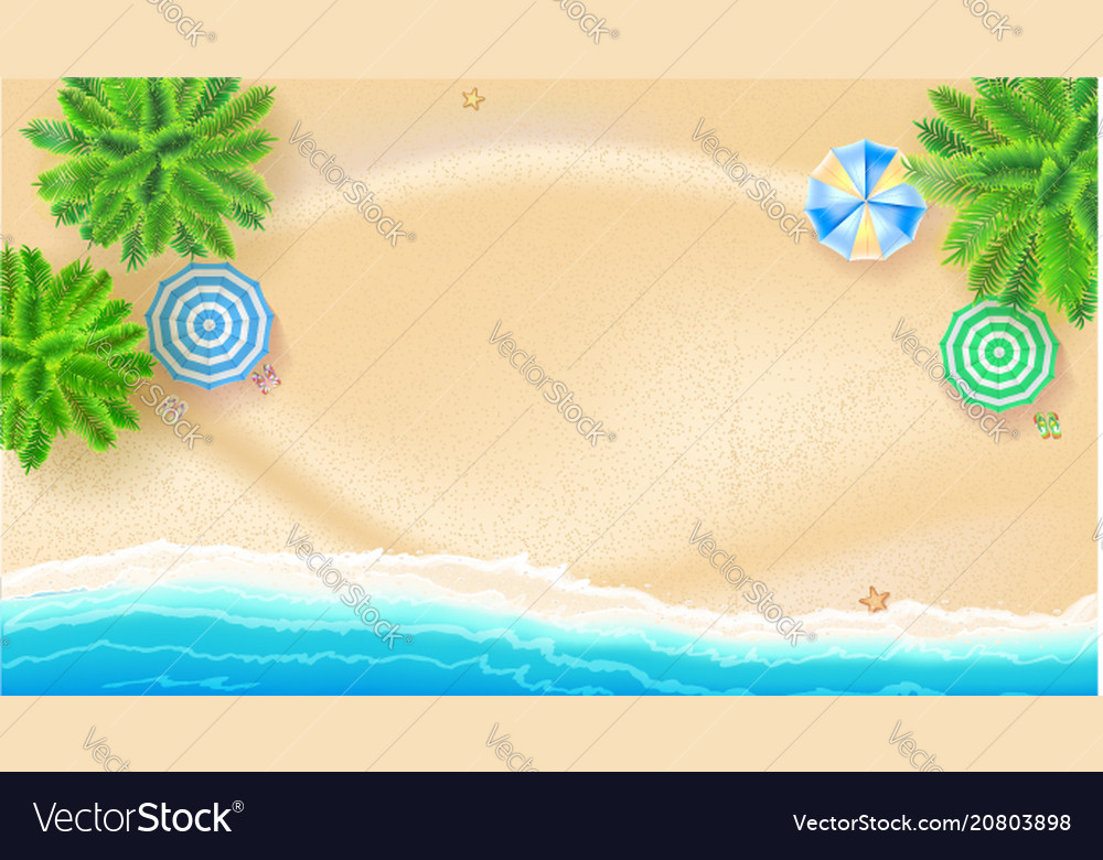 Tropical landscape with blue ocean and gold sand