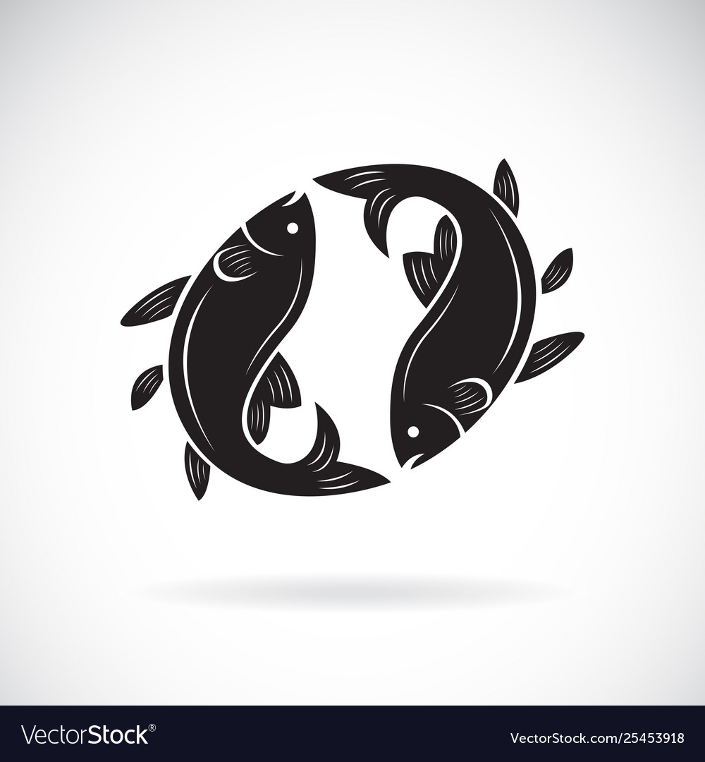 Two fish design on white background aquatic