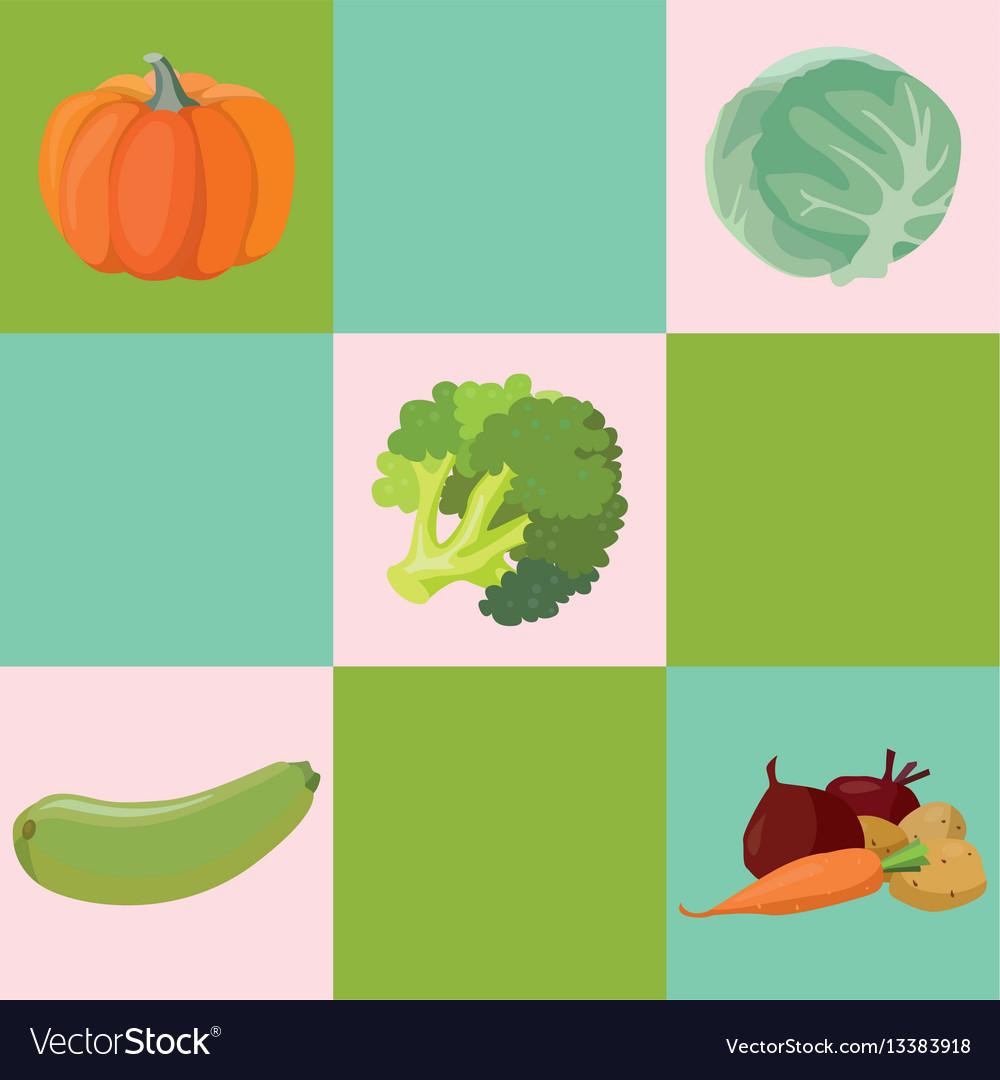 Vegetables pumpkin cabbage broccoli zucchini