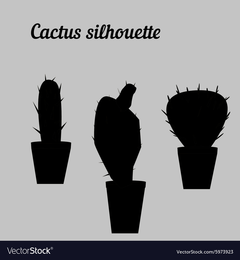 Cactus Silhouette White And Black Draw Royalty Free Vector