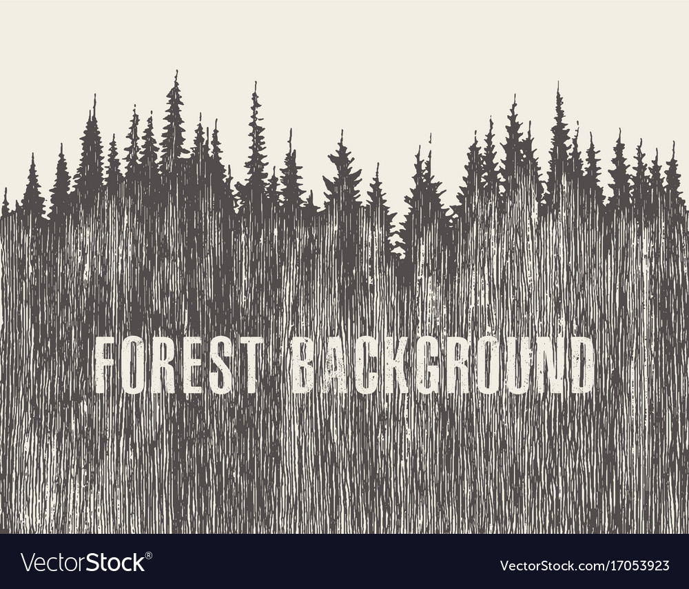 Pine forest hand drawn sketch vector image