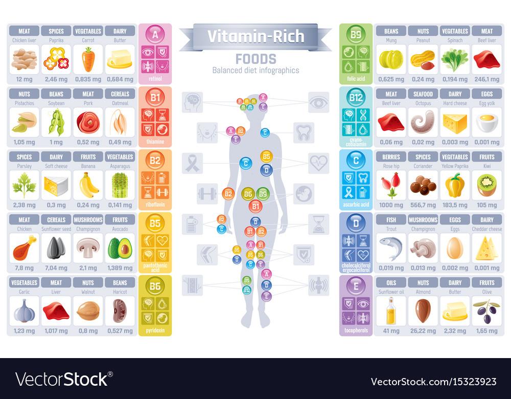Vitamin rich food icons healthy eating vector image